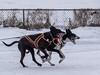 Sprinting duo