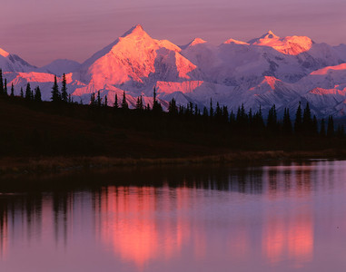 Denali at sunrise refleceted in Wonder Lake.