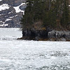 We love the ice filled waters. The following series of pictures are from Glacier Bay National Park.