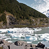 Glacier ice from Portage Glacier just outside of Haines, AK.