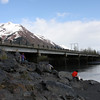 Hooligan fishing along Seward Highway.