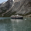 The ms Osterdam as we leave Glacier Bay National Park.