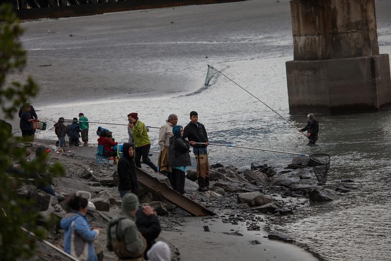Mile 20 River - Fishing