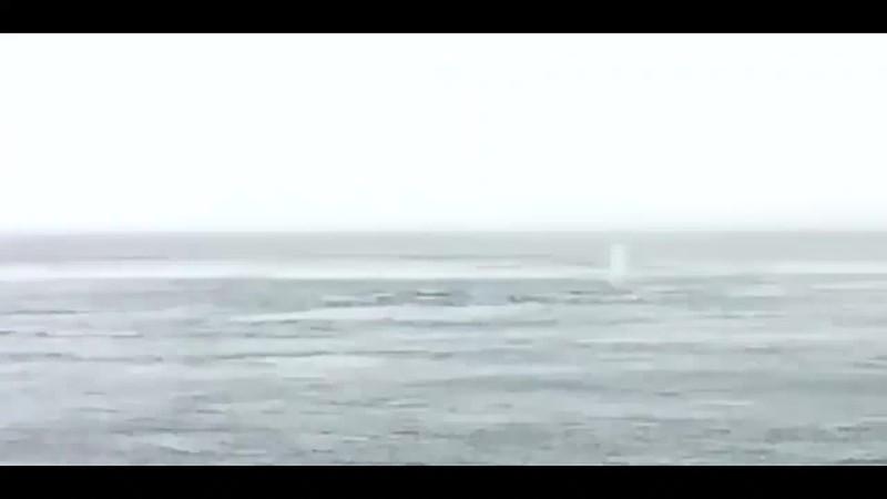 WhaleSpouts (2) (2)