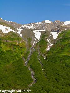 Alaska Railroad Alaska 2011-7688