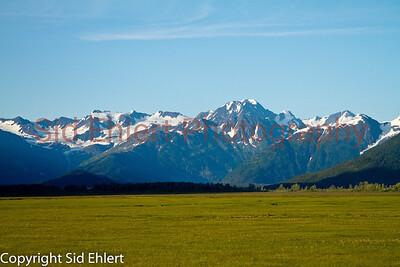 Alaska Railroad Alaska 2011-7813
