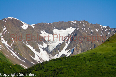 Alaska Railroad Alaska 2011-7631