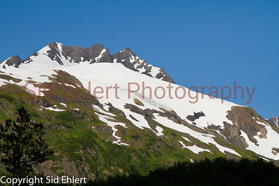 Alaska Railroad Alaska 2011-7698