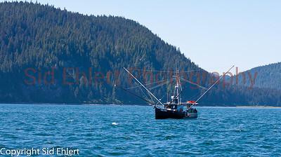 Icy Strait Alaska 2011-5425