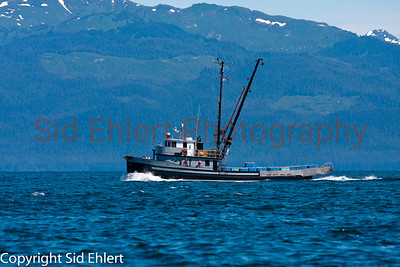 Icy Strait Alaska 2011-5435