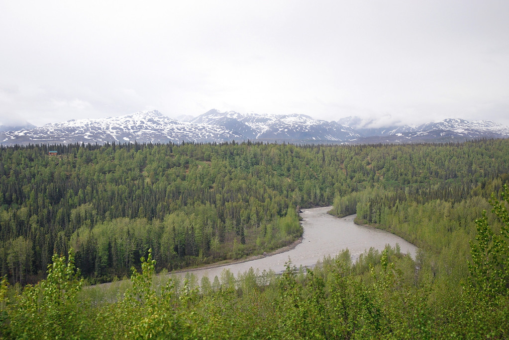 Scenes from the train on our way to Talkeetna