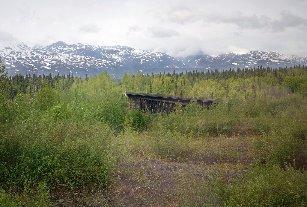 Scenes from the train on our way to Talkeetna - We had just gone over this railroad bridge.