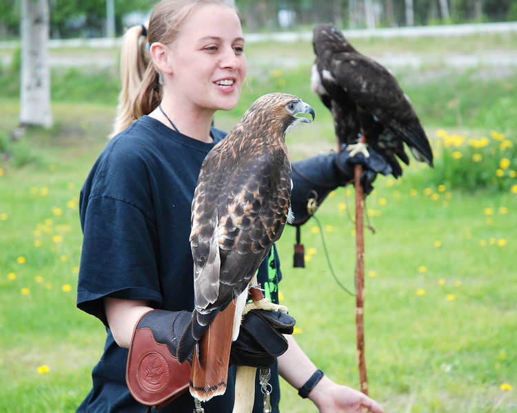 Nature group giving a demonstration of Bald (immature) and Golden eagles