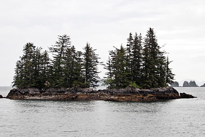 Island in Prince William Sound