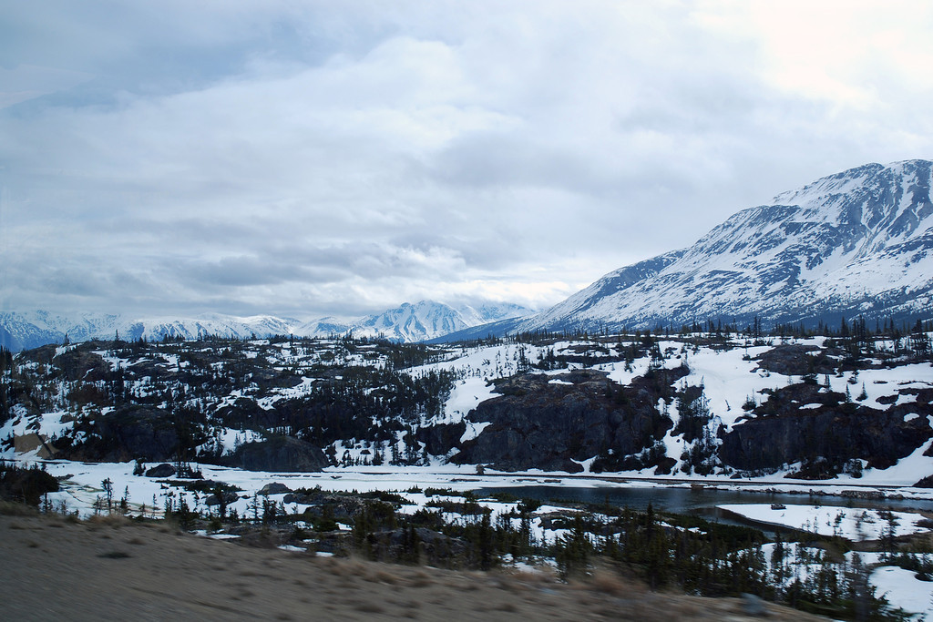 View from the train of the Yukon Trail