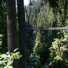 013 Capilano Suspension Bridge