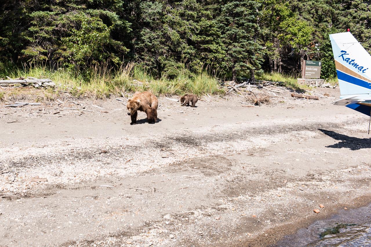 Alaska_15-2806