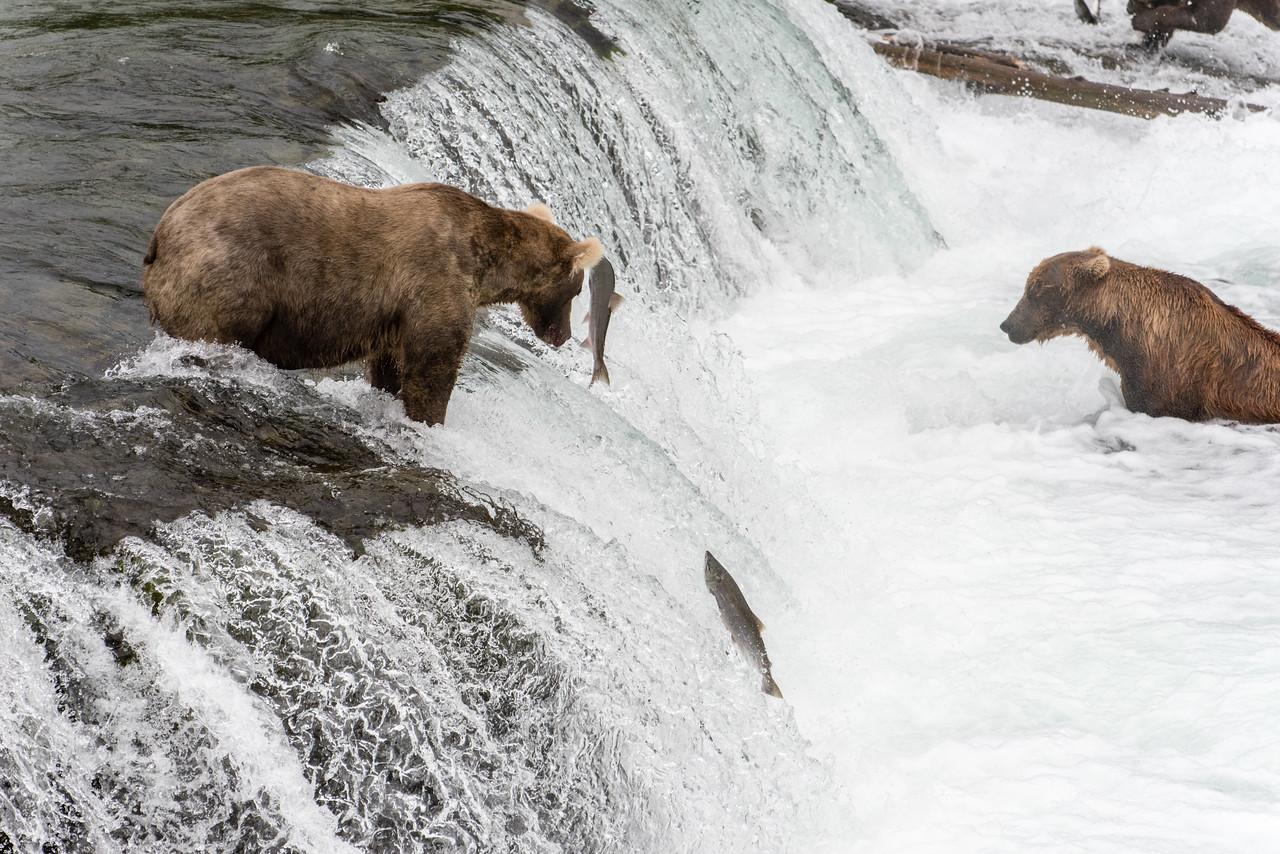 Alaska_15-2460