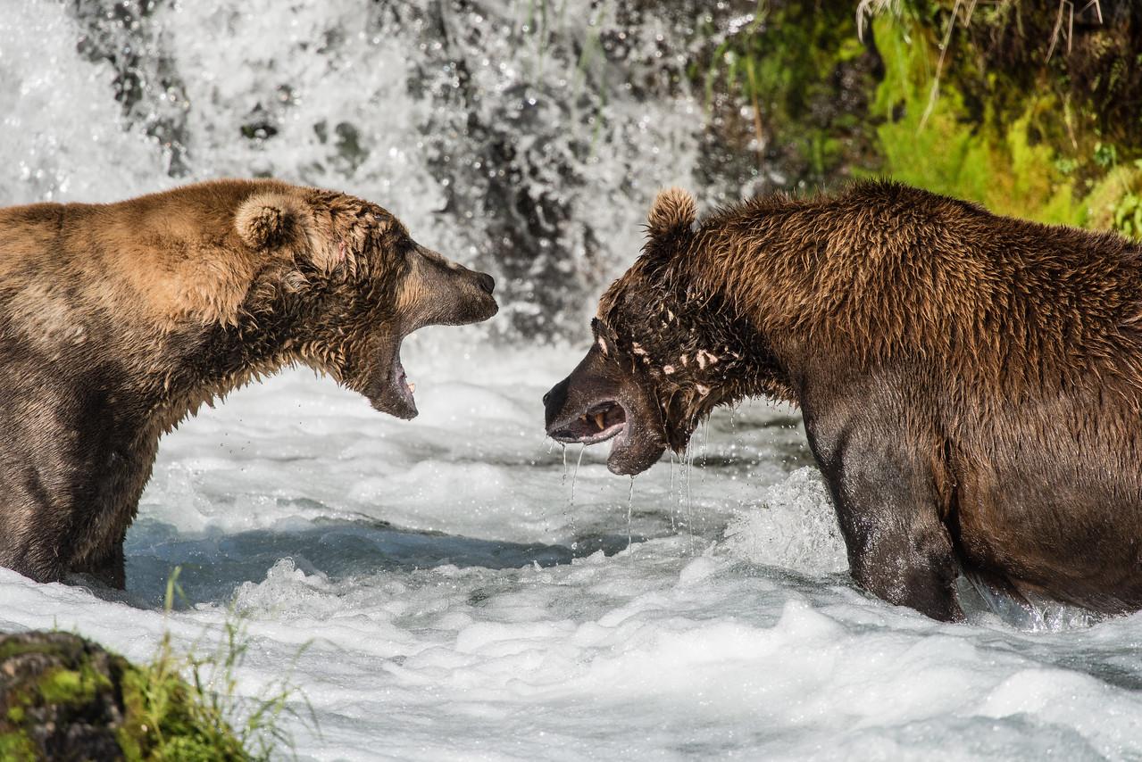 Alaska_15-1740