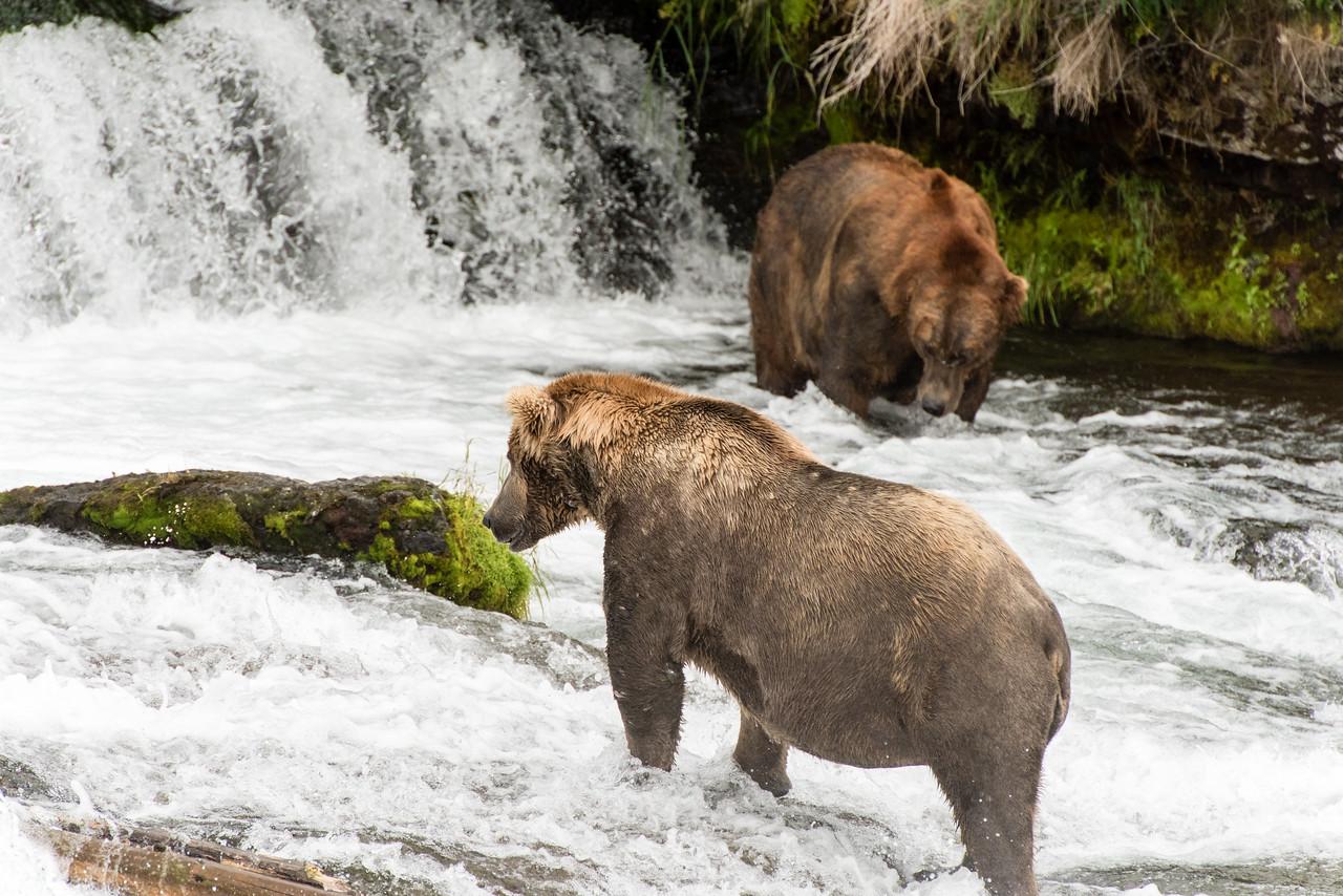 Alaska_15-2403