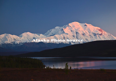 Alaska. Alpine Glow highlights this evening shot of Mt. McKinley and Wonder Lake, Denali National Park.