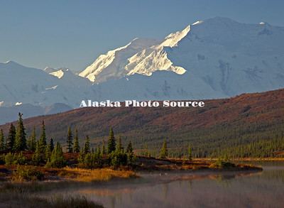 Alaska. Fall colors in the tundra accentuate this morning view of Mt. McKinley from Wonder Lake, Denali National Park.