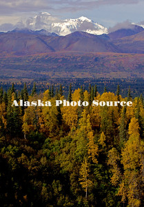 Alaska. Autumn view of McKinley from the Parks Highway.