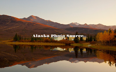 Alaska. Autumn scenic of life on Otto Lake just north of Denali National Park, Healy.
