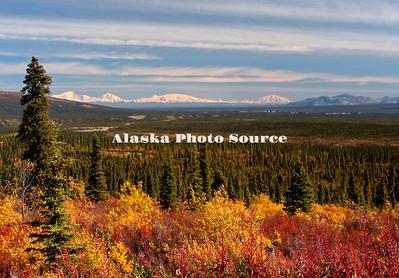 Autumn view looking toward the Wrangell Mountains