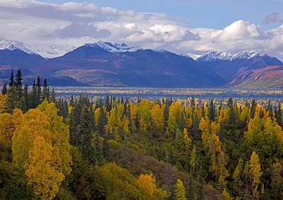 Denali Autumn Scenic_163A5411