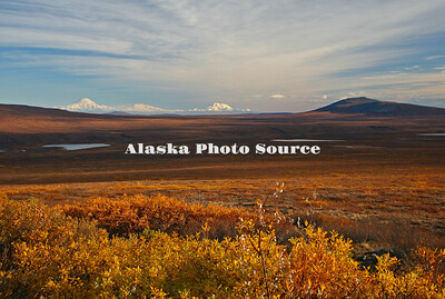 Autumn view from the Denali Hwy lookig SE toward the Wrangells