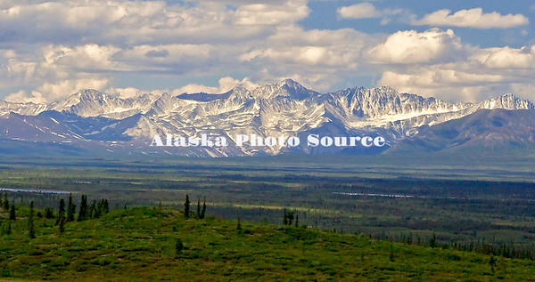 Alaska.  Summer scenic of the Alaska Range as seen from the western end of the Denali Highway.
