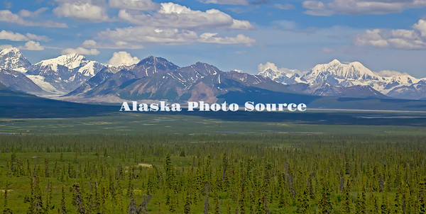 Alaska. Summer scenic view of the Alaska Range as seen from the western portion of the Denali Highway.