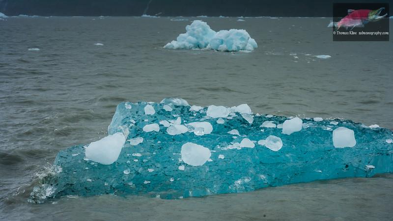 Glacier ice floe
