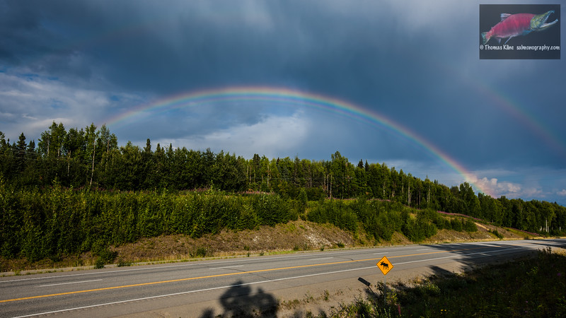 Double rainbow and multiple spectra with moose sign