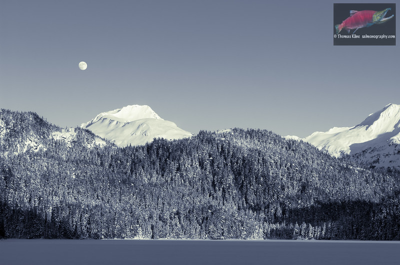 Winter Moonrise