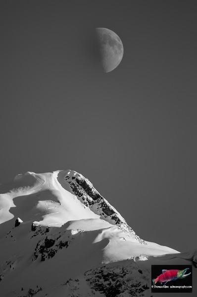 Winter moon and ski tracks