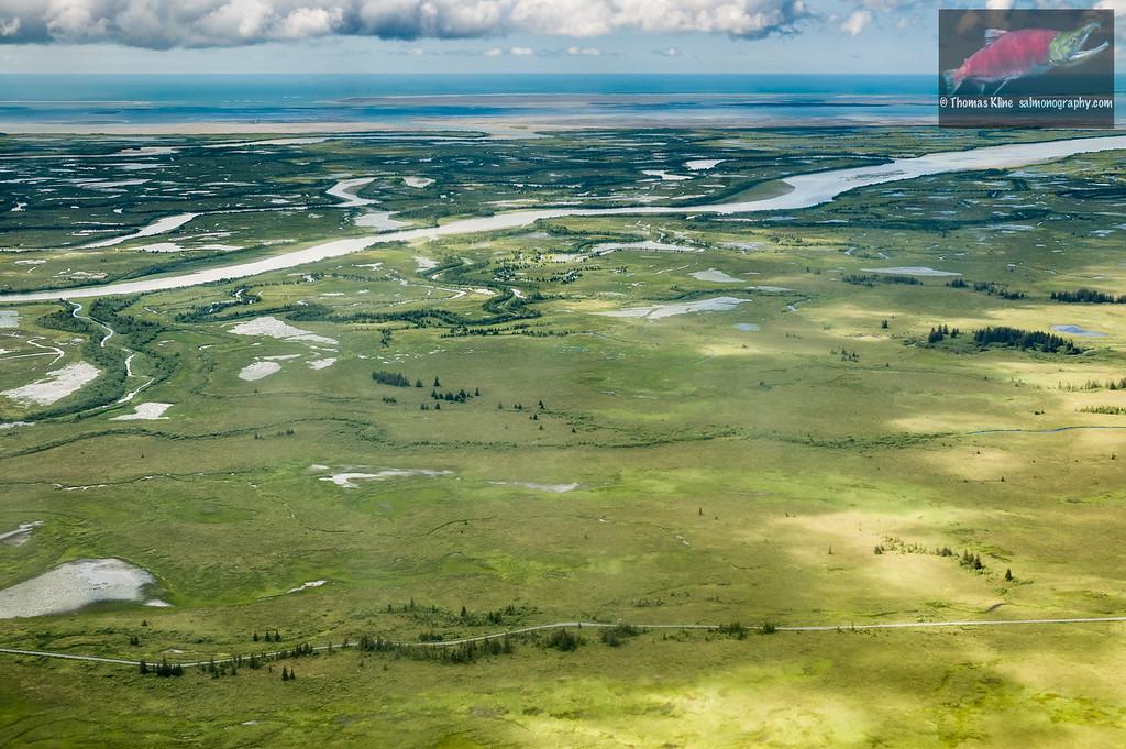 Copper River Delta Aerial