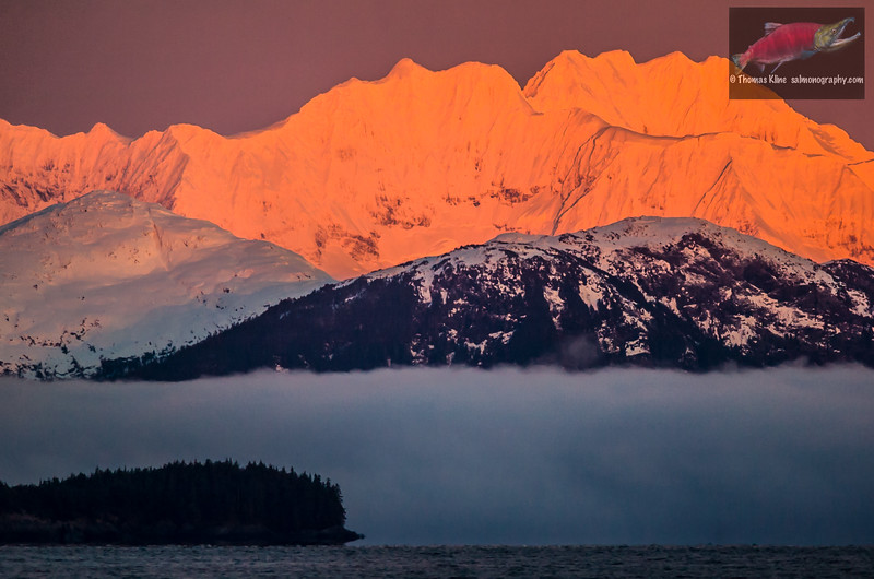 Alpenglow and fog