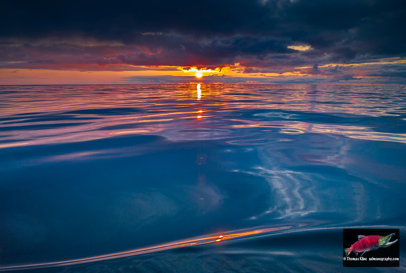Gulf of Alaska sunset