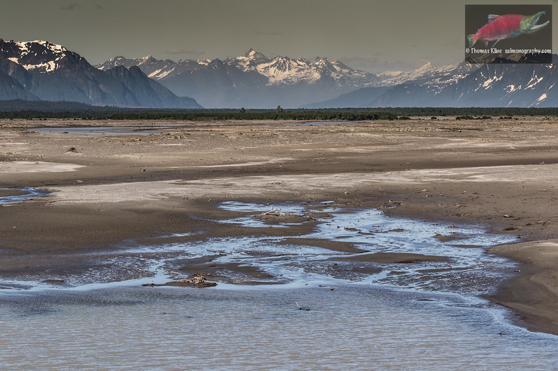 Copper River low water in western channel