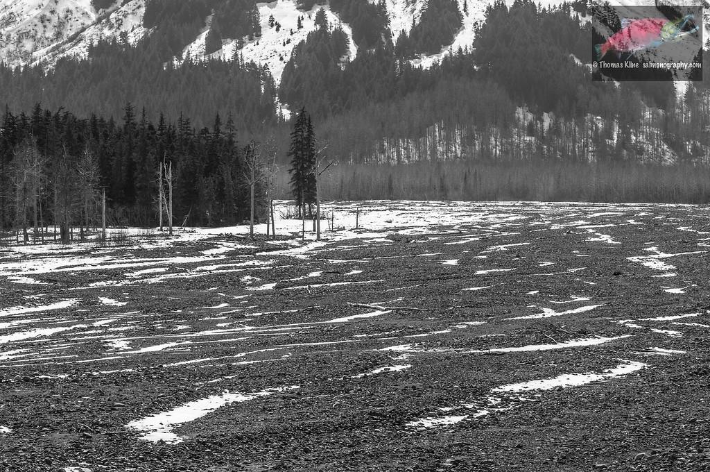 Resurection River in spring