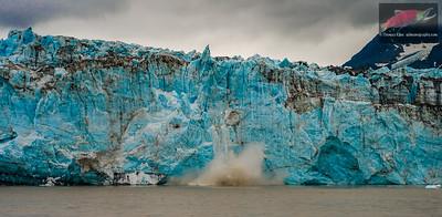 Childs Glacier calving into Miles Lake
