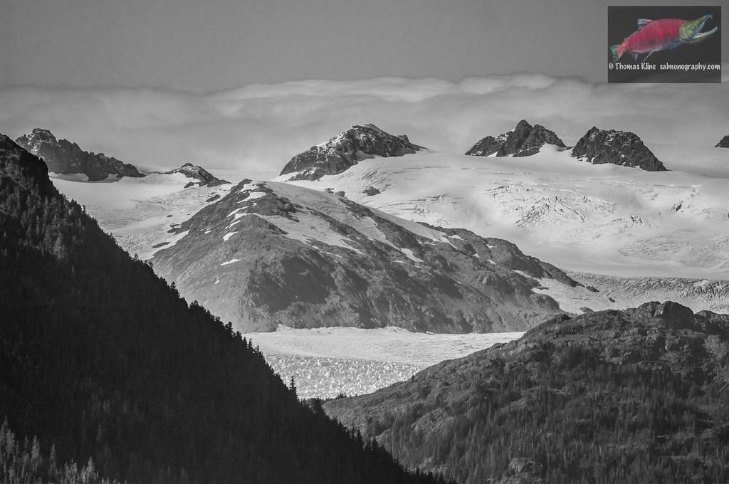 Chugach glaciers