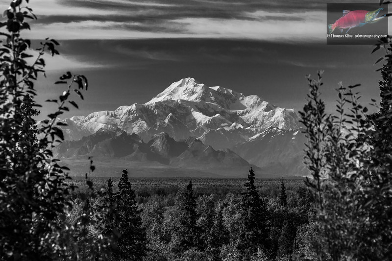 Mt. McKinley from Talkeetna