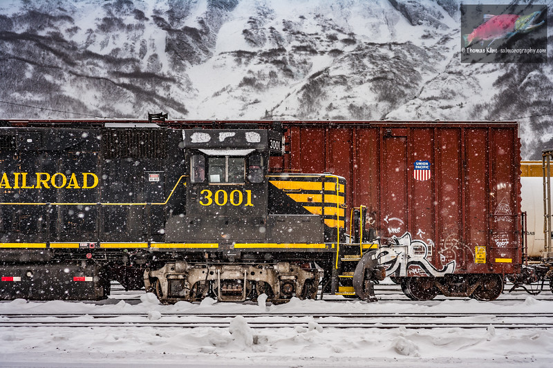 Alaska Railroad at Whittier