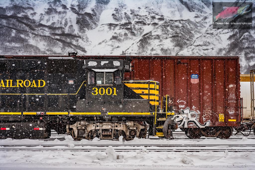 Alaska Railroad at Whittier