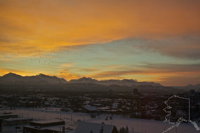 Anchorage on a Winter morning. This was taken on February 4, 2012 Look closely at the mountains and you can see the wind is blowing the snow off. The black spots to the left are pigeons. This shot was taken out of the hotel window.