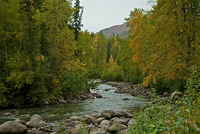 Little Susitna River flowing out of the bottom of Hatcher Pass.