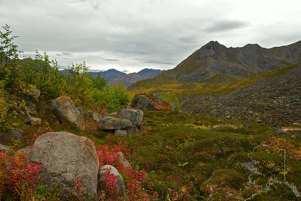 Fall colors at the top of Archangel valley
